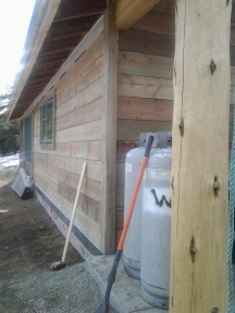 Exterior Beetle Kill Pine Siding