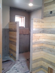 Bathroom shower enclosure, Northern Lights glass coming soon